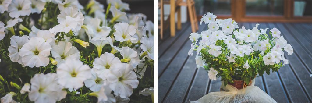 fotograf ślubny białystok 4